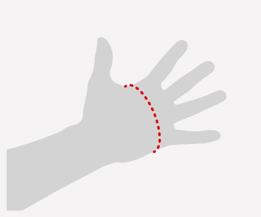 Illustration showing how to measure the hand for gloves