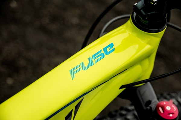 Specialized Fuse decal