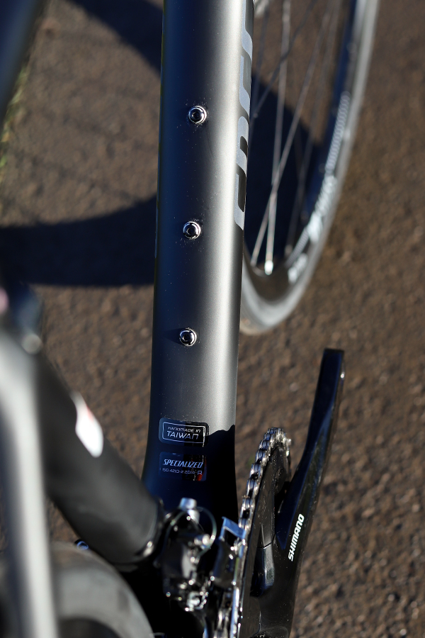 Specialized Roubaix seat frame detail
