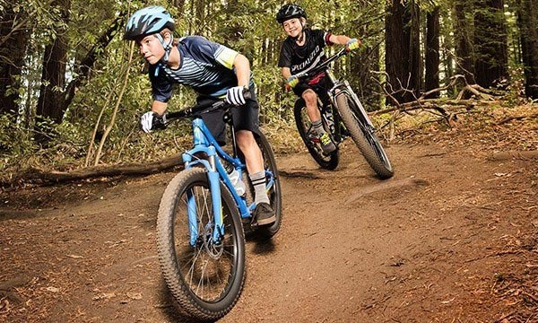Most kids' bikes follow a simple hardtail mountain bike design