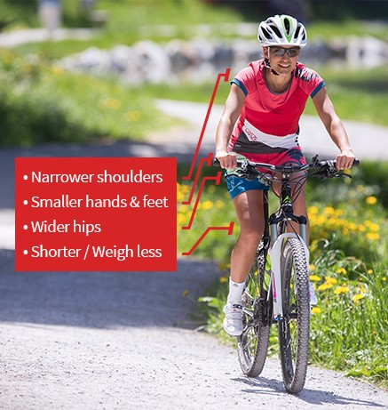 Image illustrating the general key anatomical features of a women and how they relate to women bikes