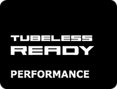 Schwalbe Tubeless Ready Performance