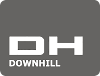 Schwalbe Downhill