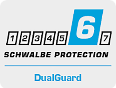 schwalbe protection 6 dualguard