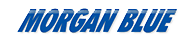 Morgan Blue logo