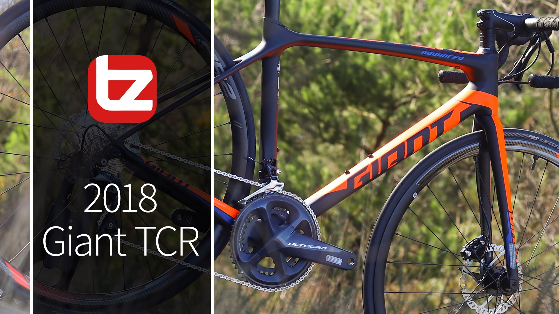2018 Giant TCR Range Review