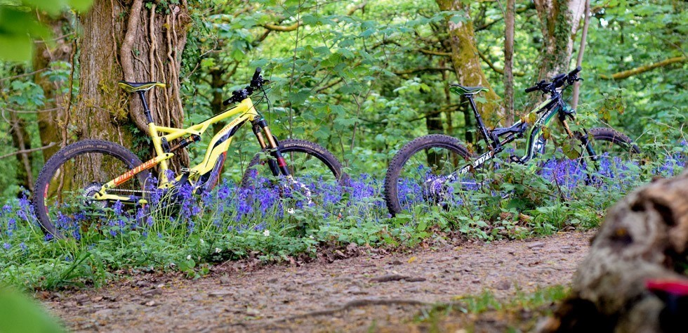 Cannondale Moterra Electric Mountain Bike Best For