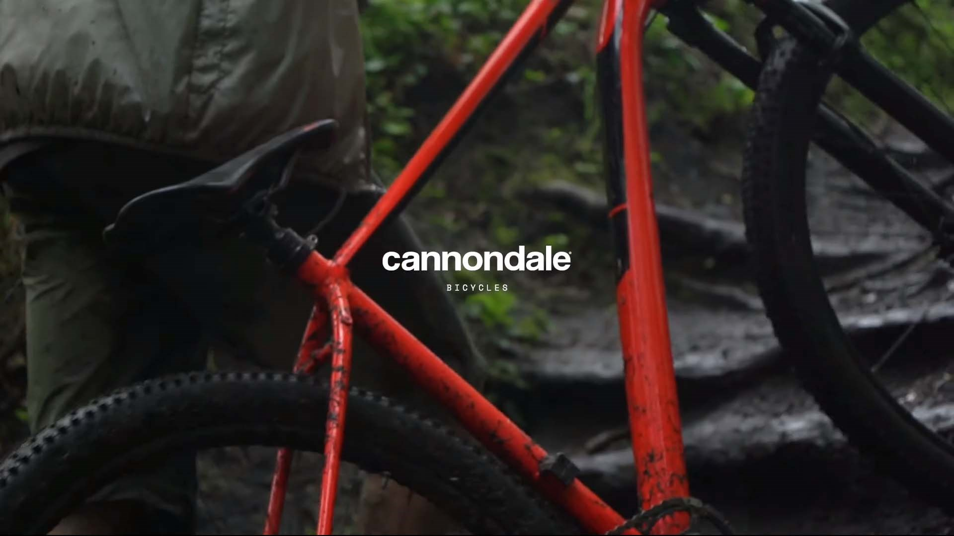 Cannondale Trail: Level Up