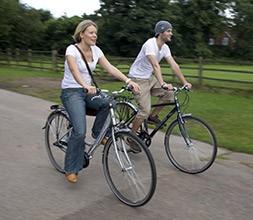 Hybrid Classic Bikes