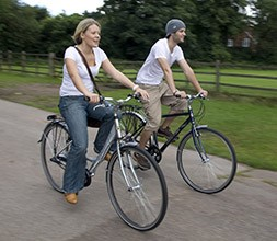 Dawes Hybrid classic bikes