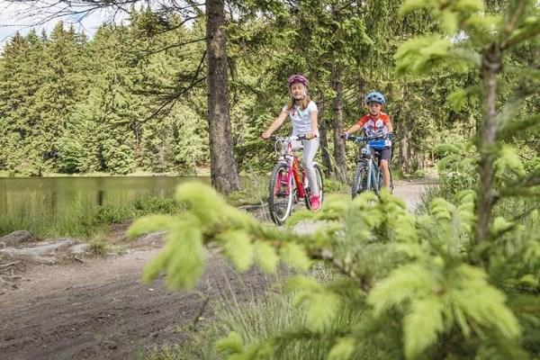 Two kids ride their bikes through a woodland trail