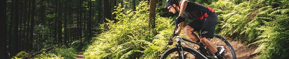 Trail Mountain Bikes - What To Look For