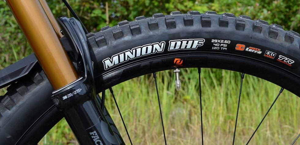 Scott Ransom 900 Minion DHF