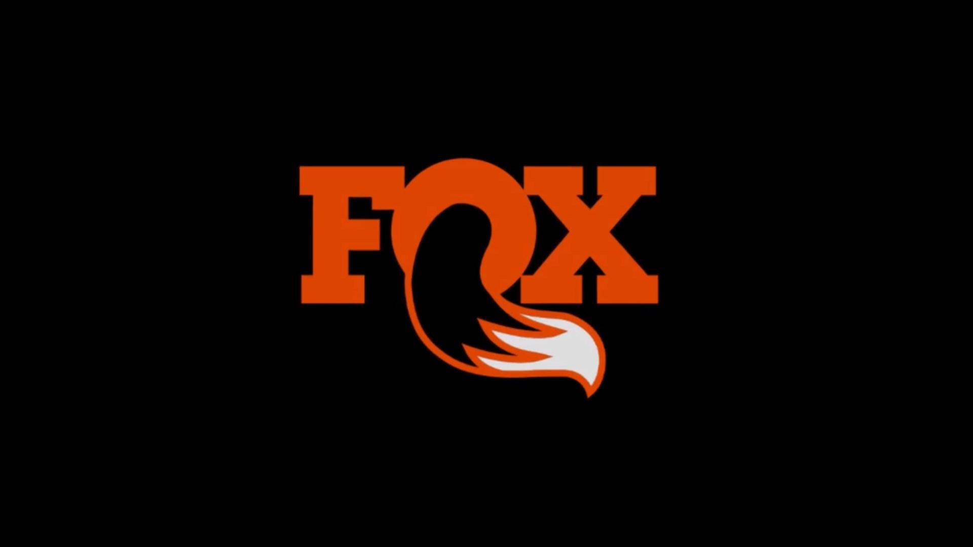 FOX DPS shock technology explained