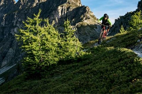 Mountain biker descending a trail