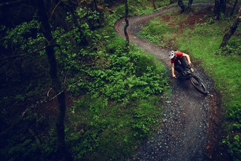 Mountain biker descending a trail