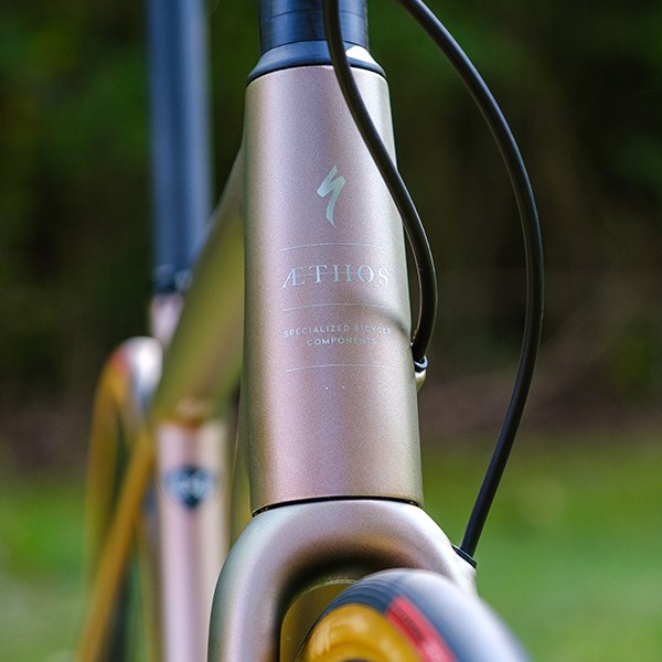 Specialized Aethos head tube detail