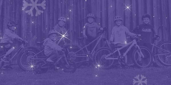 Popular Kids Bikes