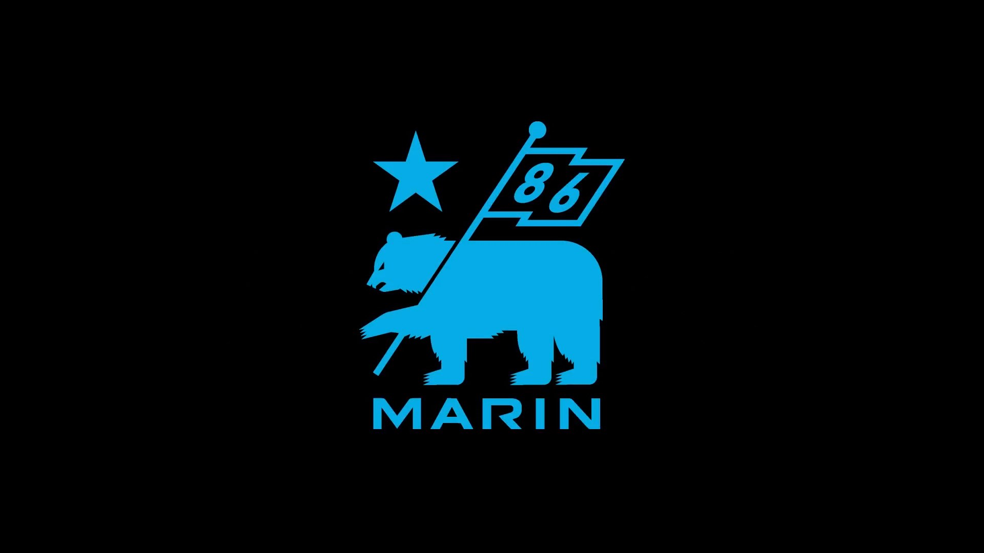 2020 Marin Pine Mountain