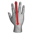 Gloves measurement