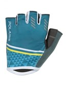 Product image for Polaris Geo Mitt SS17