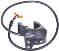 Raleigh W16 TZX Control Panel TSE