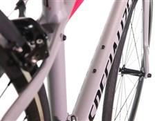 Specialized Dolce Womens  2019 - Road Bike