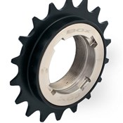 Box Components Buzz Freewheel 16T
