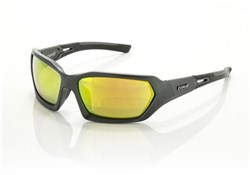 Carve Dealers Sunglasses