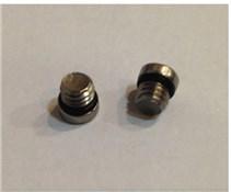 Avid Reservoir Bleed Screw/O-Ring Stainless (20 Pcs)