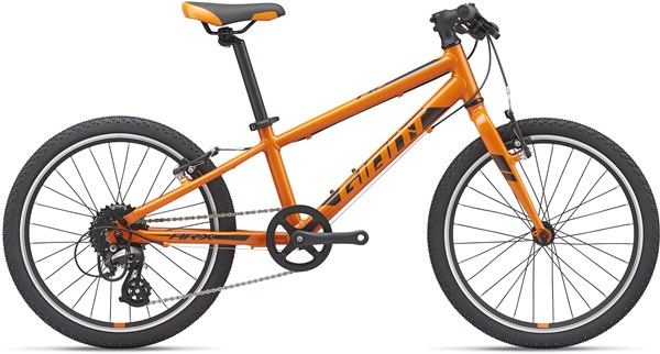 Giant ARX 20w 2019 - Kids Bike