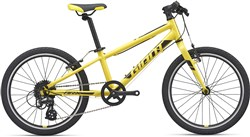 Giant ARX 20w 2020 - Kids Bike