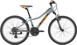 Product image for Giant XTC Jr 1 24w 2019 - Junior Bike