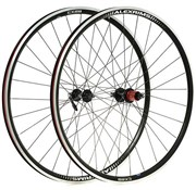 Product image for Raleigh Pro Build Rear Tubeless Ready Road/Cx 700C Q/R Wheel