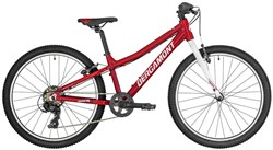 Bergamont Revox Lite 24w 2019 - Junior Bike