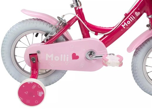 Raleigh Chainguard for Molli 12