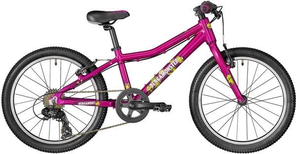 Bergamont Bergamonster 20w Girls - Nearly New 2018 - Kids Bike