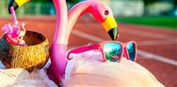 Goodr Flamingos on a Booze Cruise - The OG Sunglasses