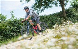 Genesis Tour De Fer 30 2020 - Touring Bike