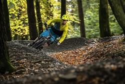 "Marin Rift Zone Carbon 2 29"" Mountain Bike 2021 - Trail Full Suspension MTB"
