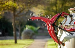 Saris Bones Ex 3-Bike Trunk Rack