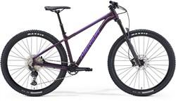 "Merida Big Trail 600 29"" Mountain Bike 2021 - Hardtail MTB"