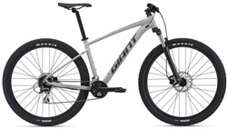 Giant Talon 29 2 Mountain Bike 2021 - Hardtail MTB