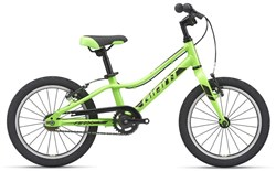 Giant ARX 16 F/W 2021 - Kids Bike