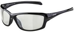 Alpina Dyfer Cermaic Cycling Glasses