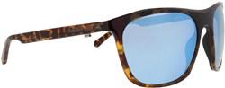 Red Bull Spect Eyewear Rocket Sunglasses