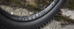 """Hope Fortus Pro4 DH 30W 26"""" Rear Wheel"""