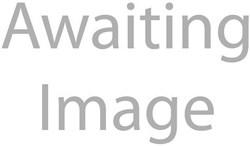 Wilkinson Wheelset RM30-Mach Exe