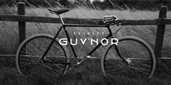 Pashley Guvnor 2019 - Hybrid Classic Bike
