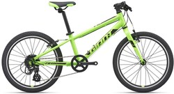 Giant ARX 20 2021 - Kids Bike